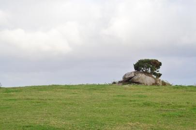 Pagórek z kamulcem i drzewkiem