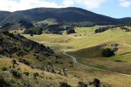 Abel Tasman Lowlands czyli koniec Inland Track przy Canaan Road