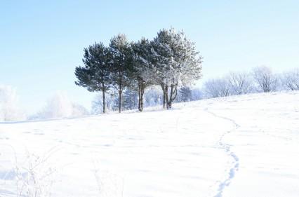 W drodze do Kalwarii Pacławskiej. Czy to nadal szlak?