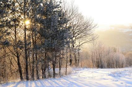 Okoliczności przyrody towarzyszące porannemu składaniu biwaku. Pogórze Przemyskie nad Gruszową.